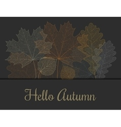 Autumn invitation or greeting card vector
