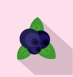 fresh blueberry icon flat style vector image