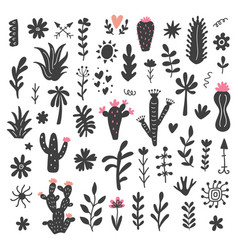 Hand drawn wild cactus flowers tropical plants vector