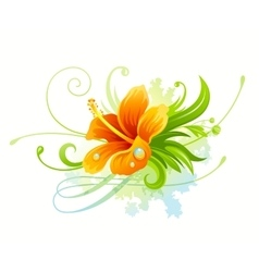 Orange hibiscus flower vector