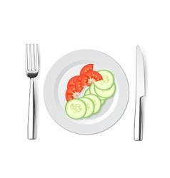 salad of cucumbers and tomatoes with a knife fork vector image