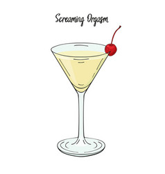 Screaming orgasm cocktail with cherry decorations vector