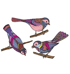 Ste of hand drawn ornate birds Beautiful colorful vector image