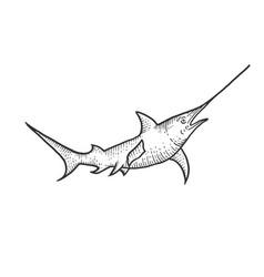Swordfish sketch engraving vector