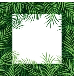 Border frame tropical palm leaf vector