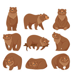 cartoon brown bear grizzly bears wild nature vector image