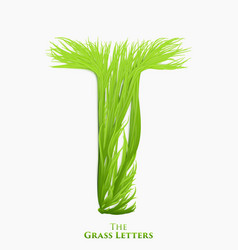 Letter t of juicy grass alphabet green t vector