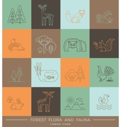 linear icons of forest flora and fauna vector image