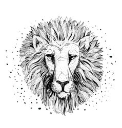 Lion face logo emblem template vector