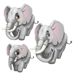 three cartoon elephant on white background vector image