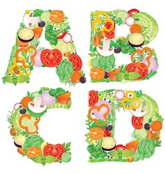 Alphabet of vegetables ABCD vector