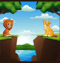 cartoon two lion in facing cliffs with nature back vector image