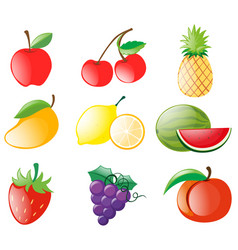 different types of fruits vector image