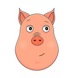 head of trusting pig in cartoon style kawaii vector image