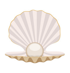 pearl in a shell vector image