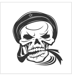 Sailor skull on white vector image vector image