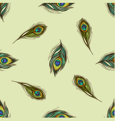 seamless pattern with hand drawn colored peacock vector image