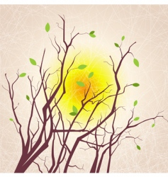 tree branches grungy background vector image