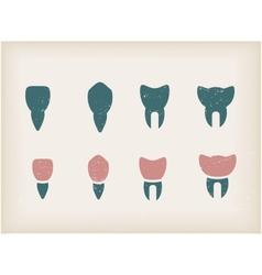 Teeth icons vector image vector image
