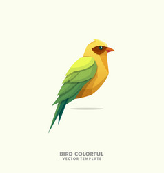 bird colorful design template vector image