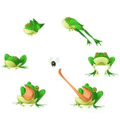 Frog cartoon design element set vector