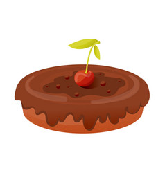 Piece of pie covered cherries and chocolate vector