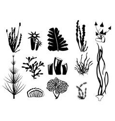 seaweed silhouettes underwater river plants algae vector image