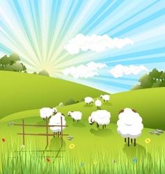 Sheep vector