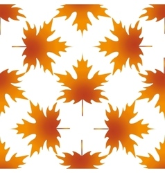 Autumn leaf maple seamless pattern vector image