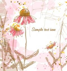 Echinacea's vector