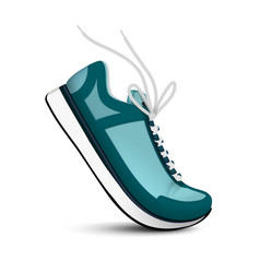 blue sneakers with white shoelaces vector image