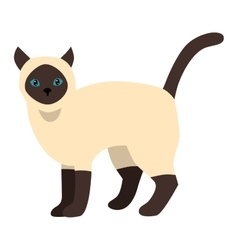 Cartoon siamese cat character vector image