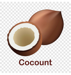 coconut icon realistic style vector image