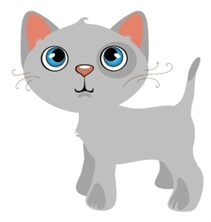 Pensive gray cat with blue eyes cartoon pet vector