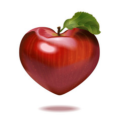 Print apple heart vector
