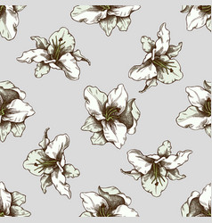 Seamless pattern with hand drawn colored lily vector