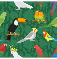 Seamless parrots birds pattern vector image vector image
