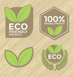 Eco friendly label set vector image vector image