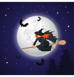 Silhouette of a witch flying on a broomstick vector image