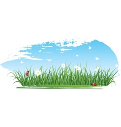 summer grass banners vector image vector image