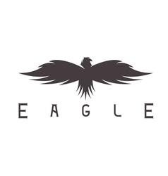 abstract design template bird eagle vector image