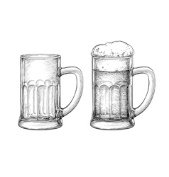 Beer mugs isolated vector