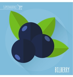 Bilberry icon vector image