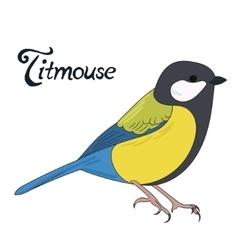 Bird titmouse vector