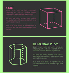 Cube and heganonal prism set vector