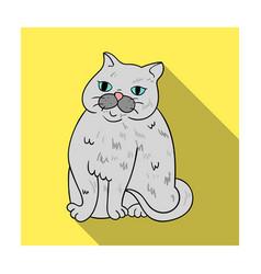 Exotic shorthair icon in flat style isolated on vector