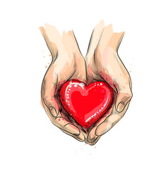 Female hands giving red heart from a splash of vector