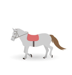 gray horse on white background vector image