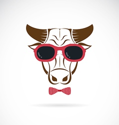 Images of bull wearing sunglasses vector