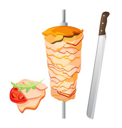 meat on skewer and some slices with tomato vector image